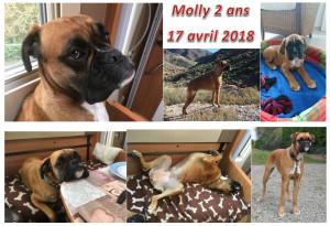 MOLLY 2